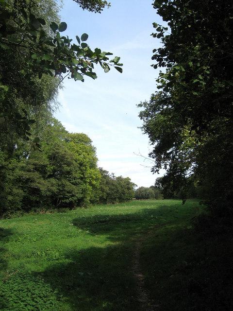 Four Acre Brook