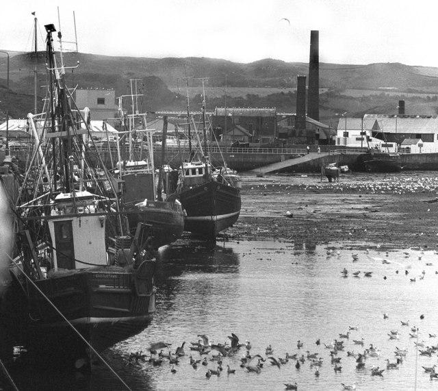 Peel Harbour at low tide