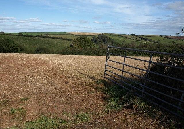 View through a gate, Higher Collaton
