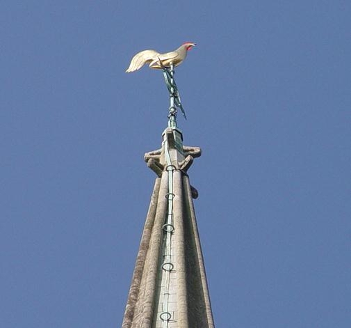 Weathercock on St Mary's spire Tetbury