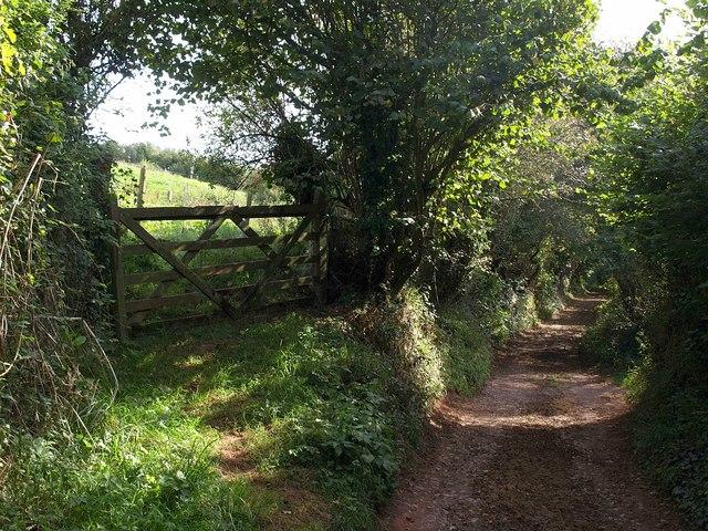 Footpath from Malborough