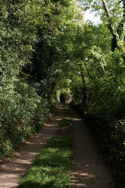 Footpath near Portlemore Barton (3)