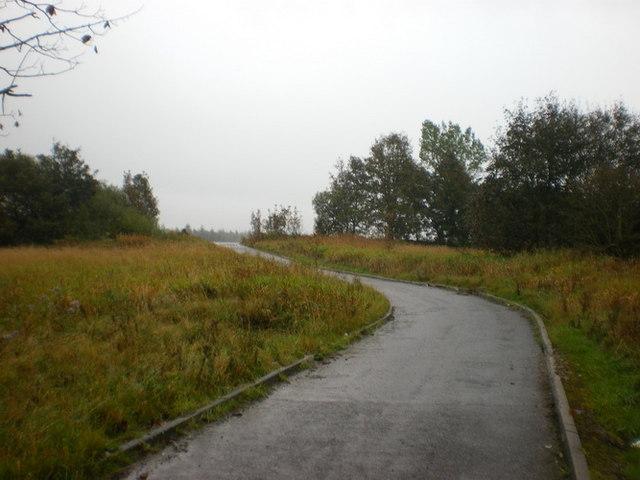 Former Blythe Chemical Works, Service road