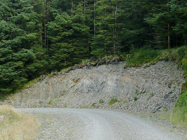 Rock exposure near Moel Prysgau, Powys