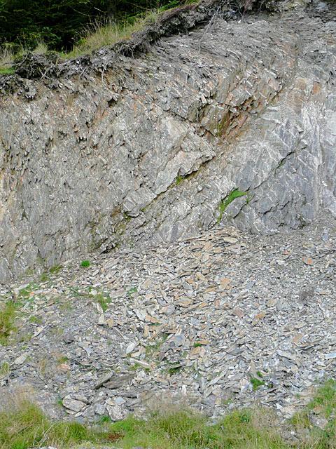 Rock exposed near Moel Prysgau, Powys