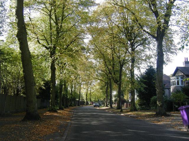 Dudlow Lane