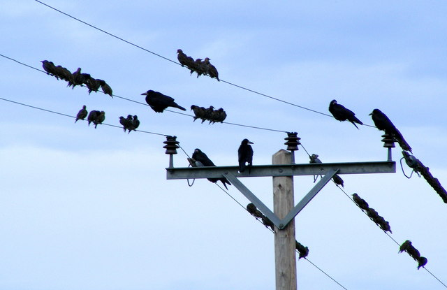 Gathering at Miltonduff