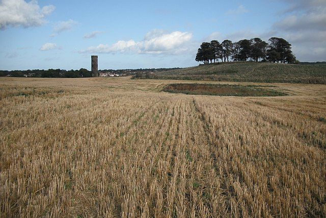 Barley stubble, Cammo