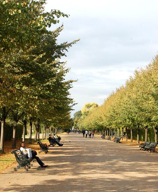 Looking north along The Broad Walk, Regents Park