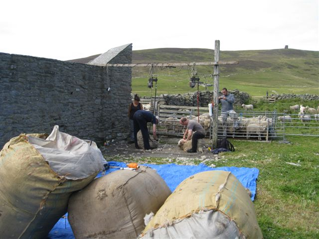Clipping in Noss