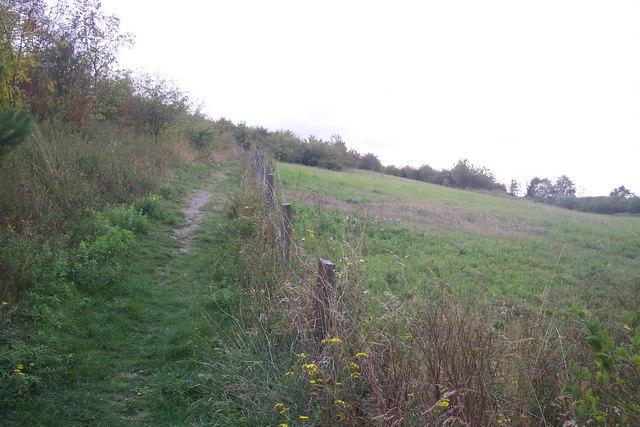 Footpath towards Shrub Hill