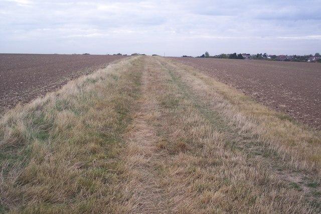 Grasmere Track, South Tankerton