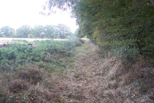 Footpath near Pook Farm