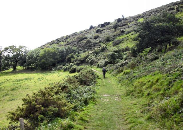 Purbeck Way near Corfe Castle