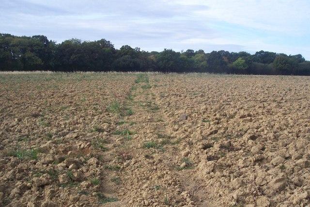 Footpath to Wagstaff Farm