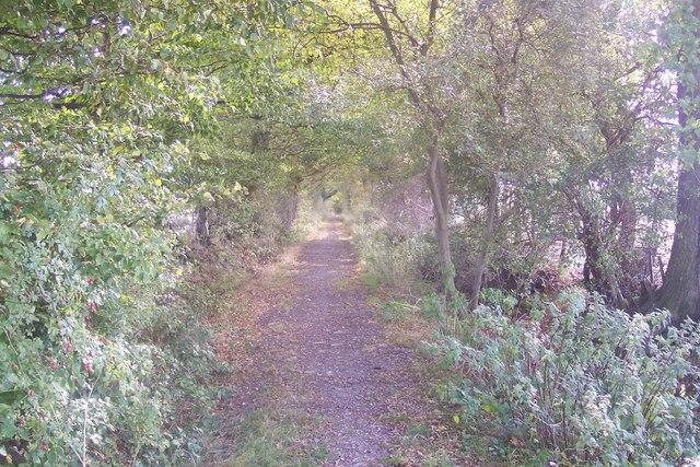 Gore Lane, byway