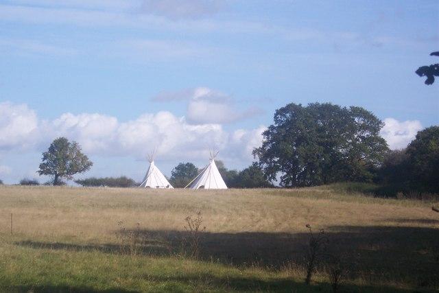 Teepees in a field near Brickhouse Farm