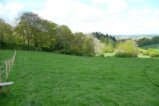Pasture on the Avon Valley Path