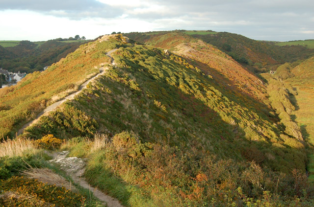 Footpath along The Gribbin ridge near Solva