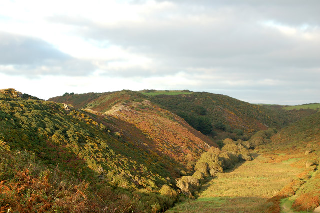 The gribbin ridge (left) and Gwadn valley (right) near Solva