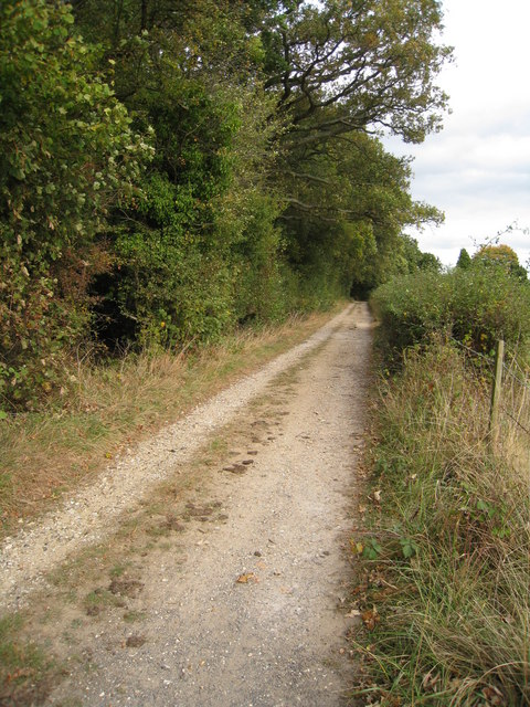 Farm track close to Hodd's Farm