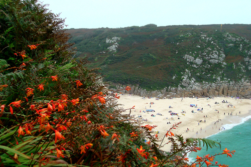 Porthcurno Beach from the Minack