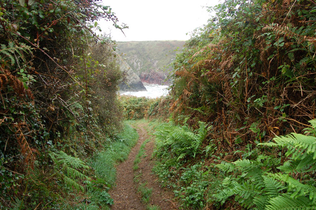 Coastpath approaching Caerfai Bay from the west