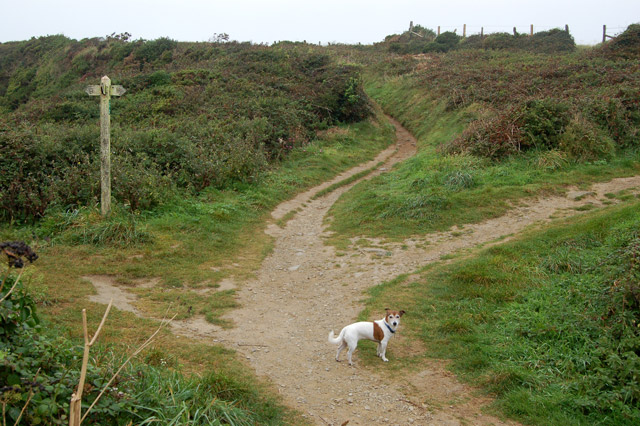 Sign on coastpath above St Nons Bay