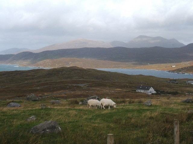 Sheep and cottage overlooking Loch Bun Abhainn Eadarra