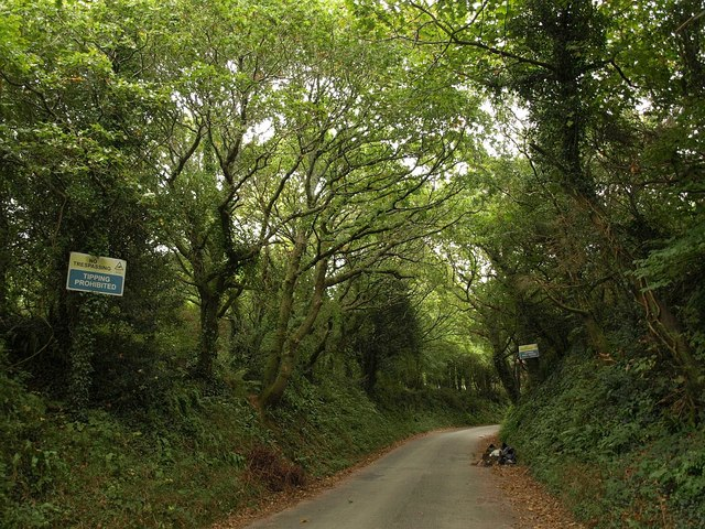 Road to Efford Fort