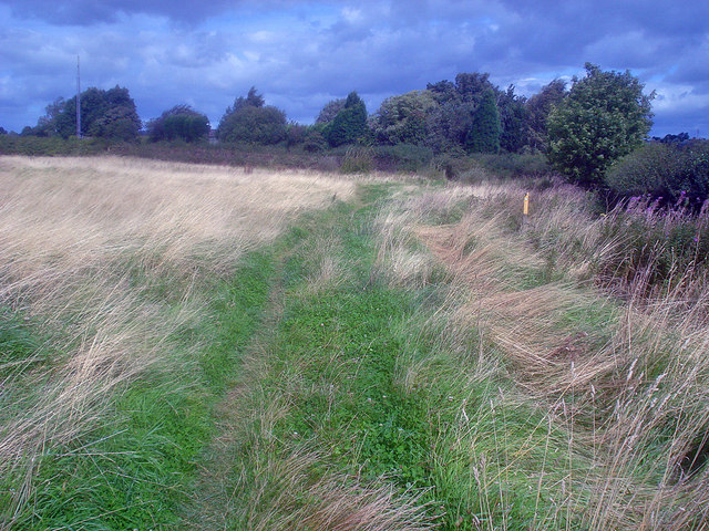 Bridleway south of Nook Farm