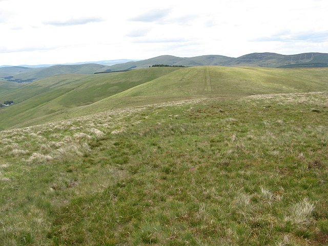 Yearngill Head