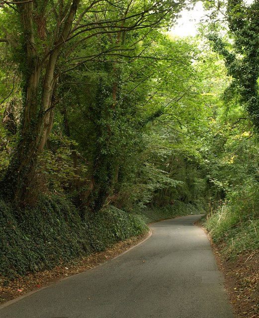 Military Road, Efford