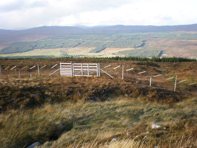 Gates in Deer Fencing at end of track