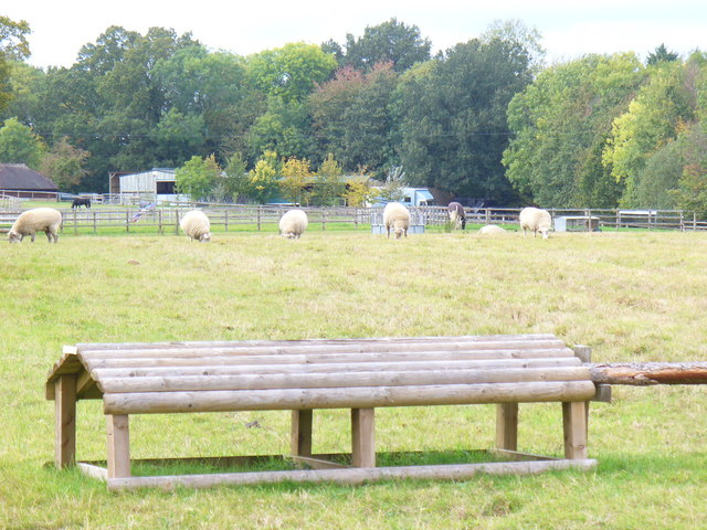 Multi-Use of Land in Shillinglee Park