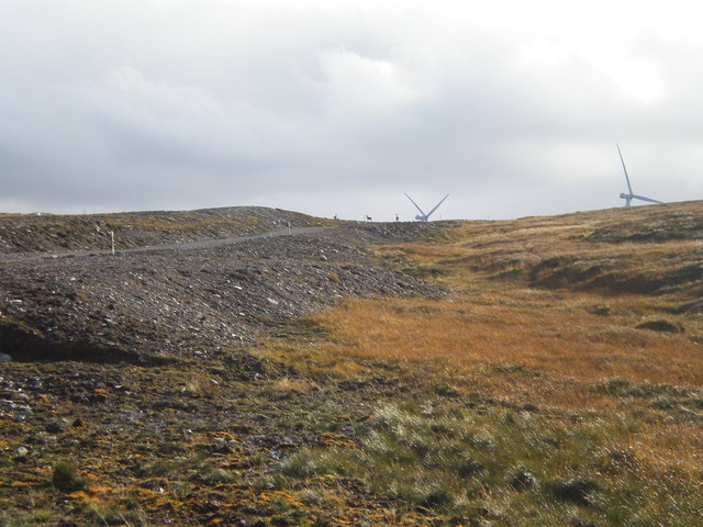 Deer and Wind Turbines by Windfarm road