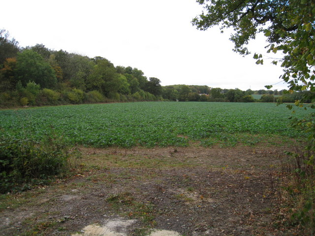 Arable land - s/w of Poors Farm