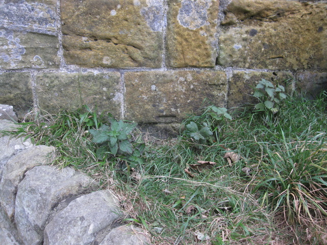Bench mark below the entrance to Scarborough Castle