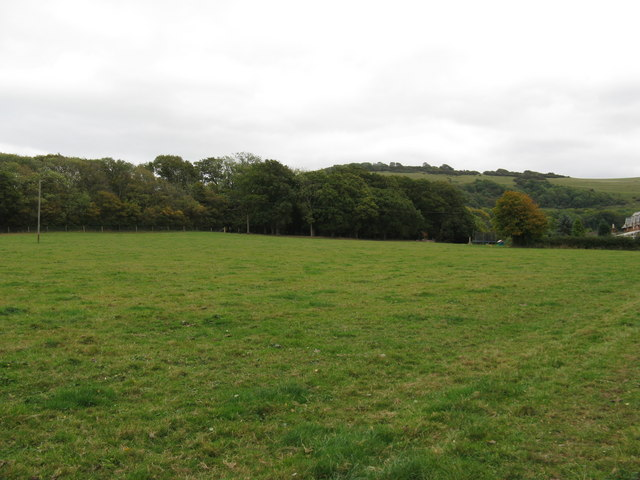 View across field to Cobsham Rough