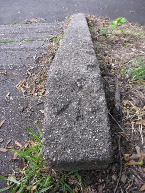 Rivet bench mark on steps through The Holms