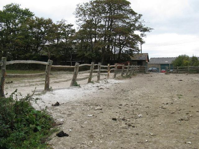 Well trodden paddocks on Poynings Grange Farm
