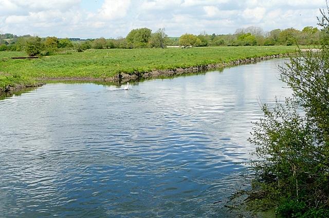 River Avon at Hale