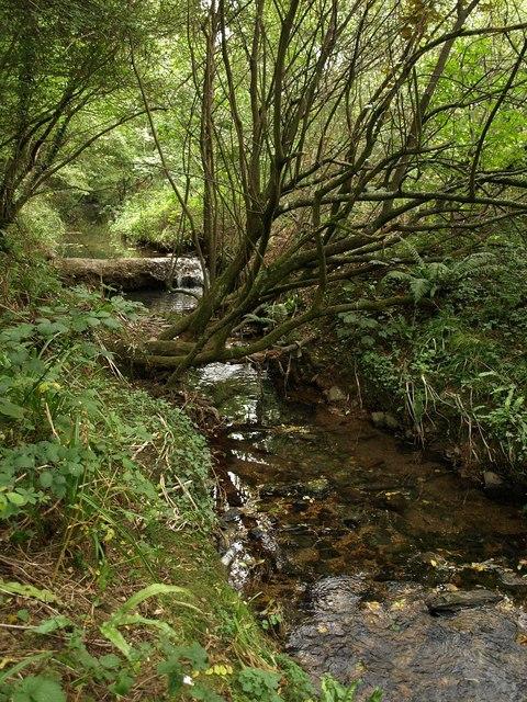 Stream near Deerpark