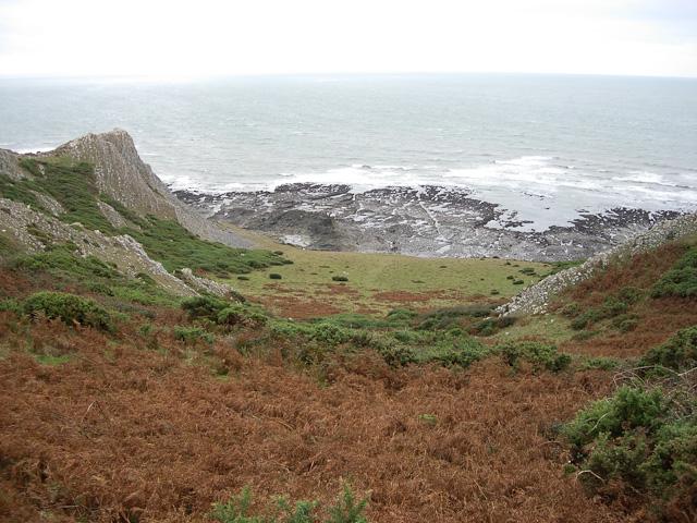 Common Cliff