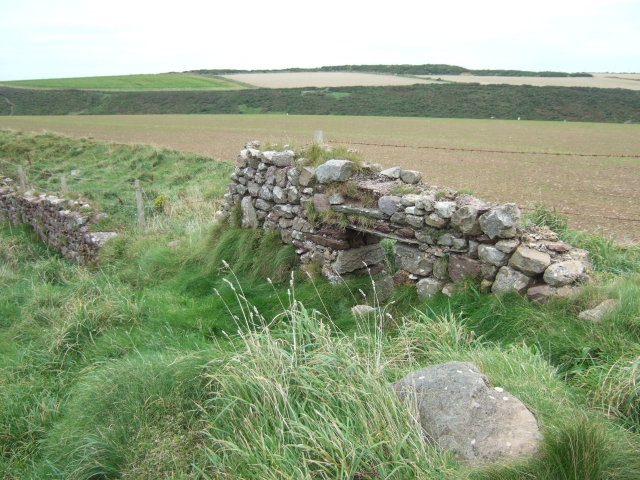 Ruined wall beside the coast path, Dale