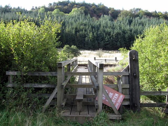 Footbridge near Needle Eye