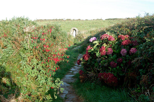Path to the shrine at St Nons Well