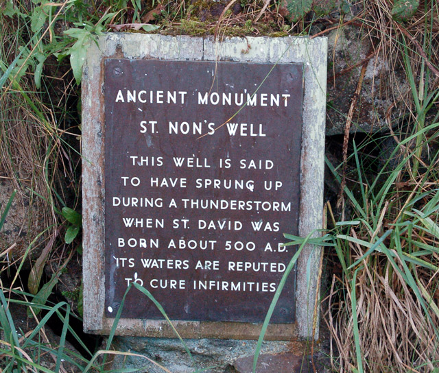Explanatory sign at St Nons Well