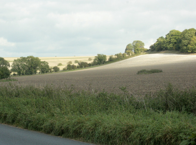 2009 : Recently cropped fields south of Brixton Deverill