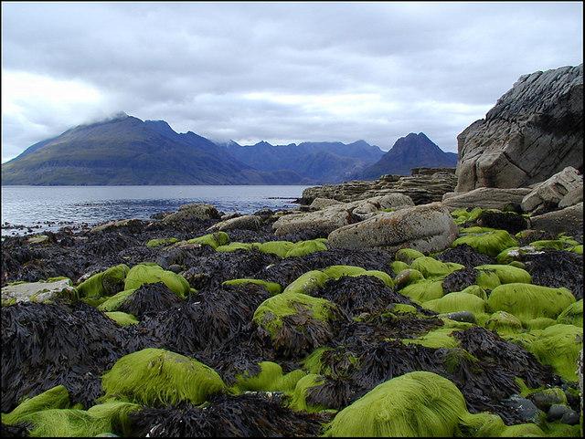 Elgol Shoreline, Isle of Skye, Scotland.